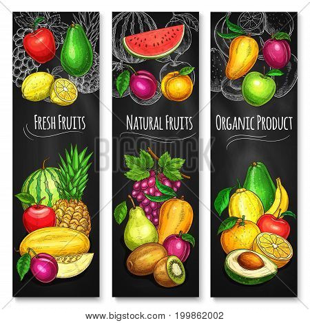 Tropical and garden fruit chalkboard banner set. Apple, orange and pear, lemon, mango and grape, pineapple, banana and watermelon, peach, kiwi, avocado and plum on blackboard for food design
