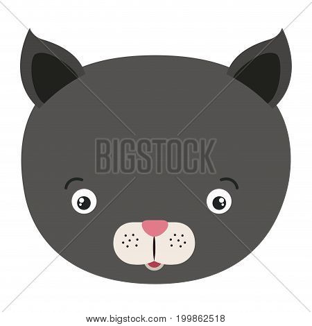 white background with colorful caricature face cat cute animal vector illustration
