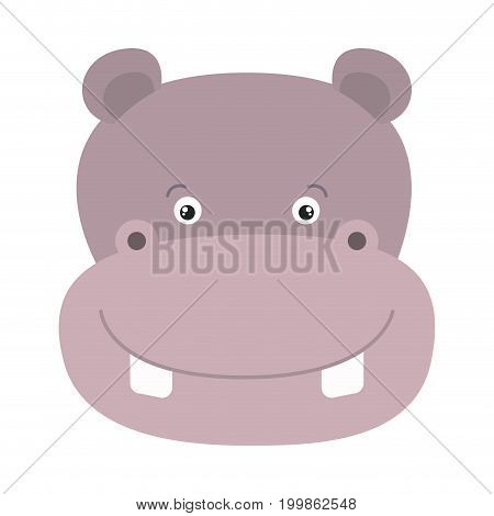 white background with colorful caricature face hippopotamus cute animal vector illustration
