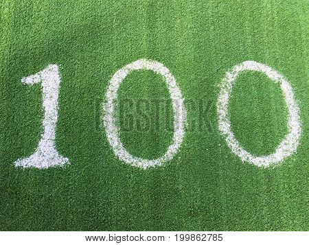 Number One Hundred 100 On Green Grass