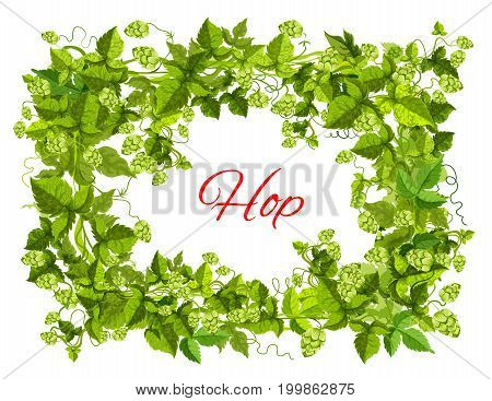 Hops plant green branches with leaf and cone arranged into frame with copy space in center for beer label, brewery emblem or bar menu floral decoration