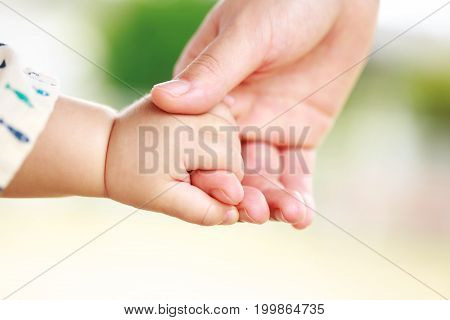 Family scene closeup parent and baby holding hand together