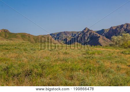 Steppe Landscape In The Spring Near The Ili River, Kazakhstan