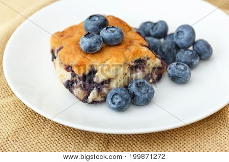 Blueberry scone with blueberries on a white plate