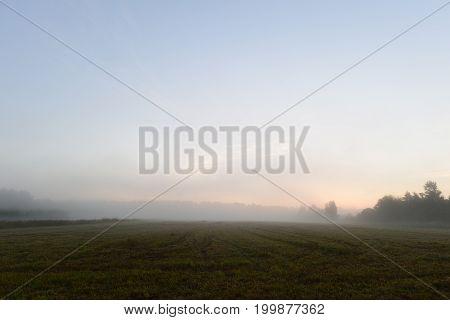 Foggy summer morning before dawn on a freshly mown field