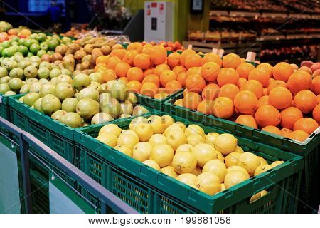 Shelf with citrus fruits in large food supermarket, toned image