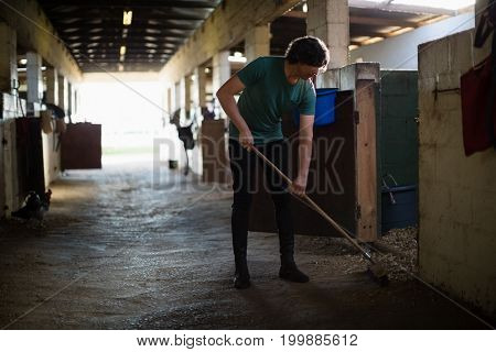 Young man using broom to clean the stable