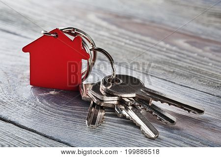 estate concept with key red keychain with house symbol