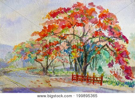 Watercolor painting original landscape red orange color of peacock flowers tree in sky and cloud with mountain background