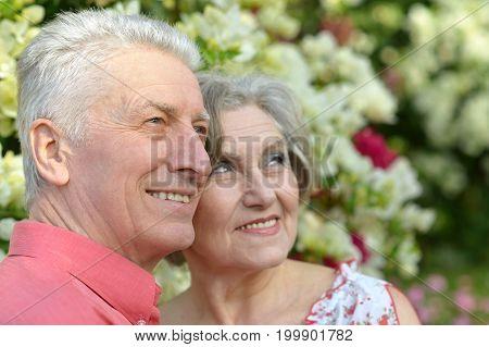 portrait of beautiful caucasian senior couple hugging