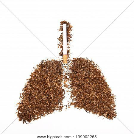 Human Lung Made From Tobacco Isolated With Cigarette On White Background.