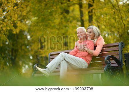 Happy senior couple hugging  in autumn park