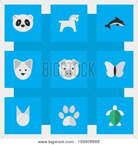 Elements Wolf, Steed, Foot And Other Synonyms Moth, Footprint And Pig.  Vector Illustration Set Of Simple Animals Icons.