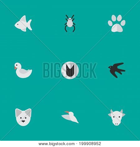 Elements Swan, Fish, Kine And Other Synonyms Swallow, Swan And Bird.  Vector Illustration Set Of Simple Fauna Icons.