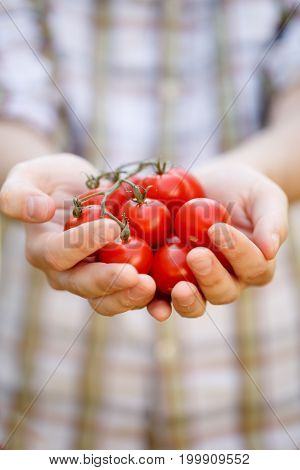 Photo of young man in plaid shirt with cherry tomatoes in hands