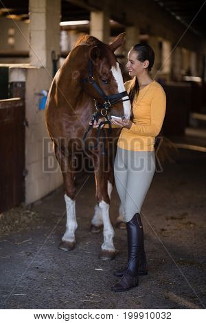 Full length of female jockey with horse standing in stable