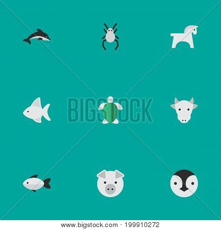 Elements Fish, Tarantula, Perch And Other Synonyms Pig, Steed And Kine.  Vector Illustration Set Of Simple Fauna Icons.