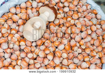 A pile of whole brown hazel nut with wooden nutcracker. Healthy organic snack hazelnut. Group of food ingredient. Filbert nutshell seed. Vegetarian nutrition.