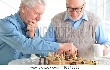 Portrait of two senior men playing chess