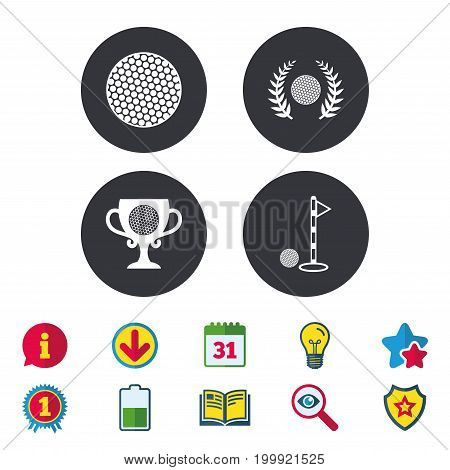 Golf ball icons. Laurel wreath winner award cup sign. Luxury sport symbol. Calendar, Information and Download signs. Stars, Award and Book icons. Light bulb, Shield and Search. Vector