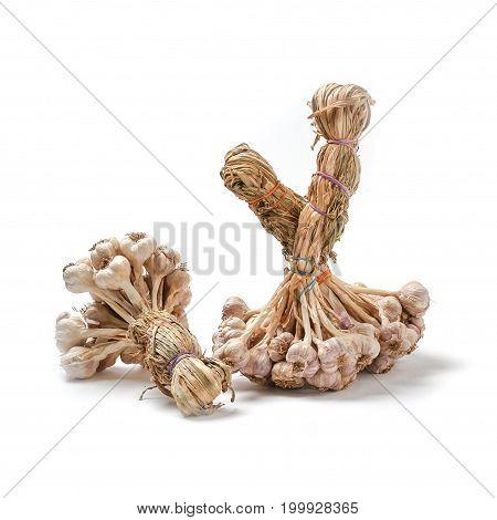 Thai garlic on white background nature asia.