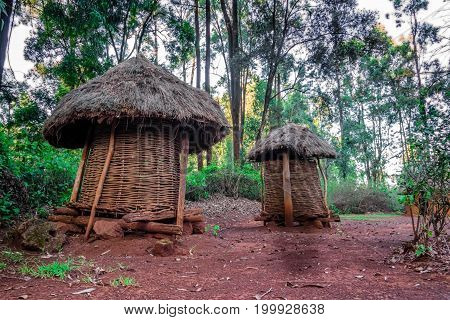 Two Thatched Granaries In African Village, Kenya
