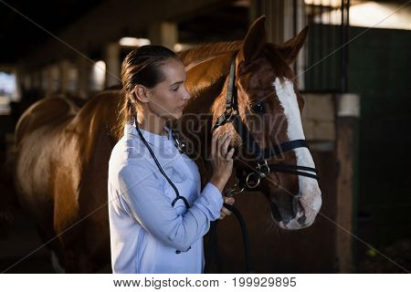 Confident female vet stroking horse at stable