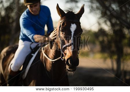 Male jockey riding horse at barn