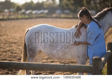 Side view of female vet injecting horse at barn
