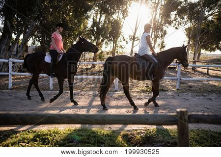 Female friends riding horses against sky at barn
