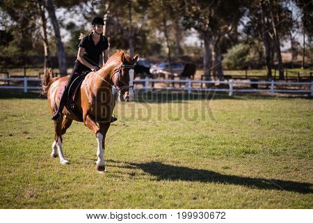 Female jockey riding horse at equestrian center