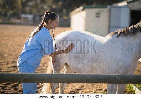 Side view of female vet examining horse with stethoscope at barn