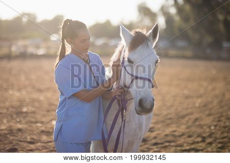 Female vet examining horse while standing on field at paddock