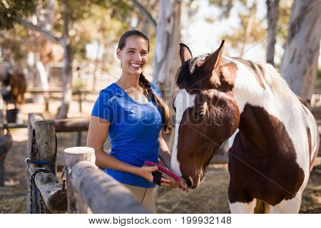 Portrait of female jockey cleaning horse while standing at paddock