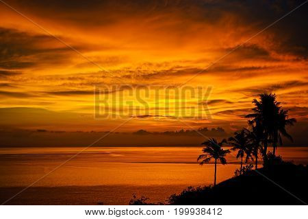 Magic tropical sunset by the ocean. Silhouettes of palm trees, bright yellow clouds, romantic beach on a tropical island during sunset. Travel and pleasure on the beach.