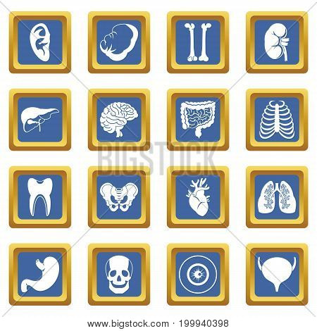Human organs icons set in blue color isolated vector illustration for web and any design