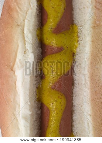 Close Up of a Hot Dog with Mustard