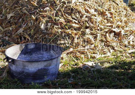metal bucket by pile of corn husks