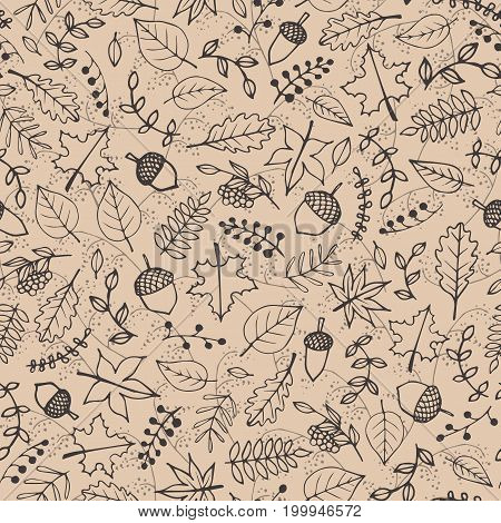 Vector hand drawn pattern with autumn elements contours: foliage berries and acorns on the beige background. Maple sycamore birch beech and oak tree leaves. Line art for your design.