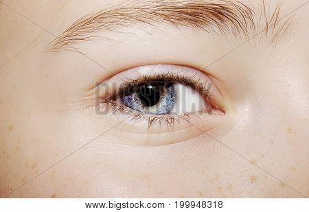 A Beautiful Insightful Look Eye. Close Up Shot