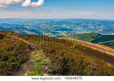 Footpath On The Edge Of Alpine Hillside