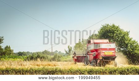 Combine Harvests The Wheat In A Field In Summer