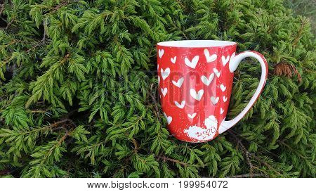 red Cup with hearts in the branches of spruce.