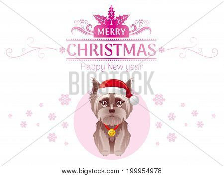 Puppy Yorkshire Terrier dog in Santa Claus hat Merry Christmas Happy New Year greeting card, isolated on white background. Cute cartoon pet animal. Holiday template flyer design. Vector illustration