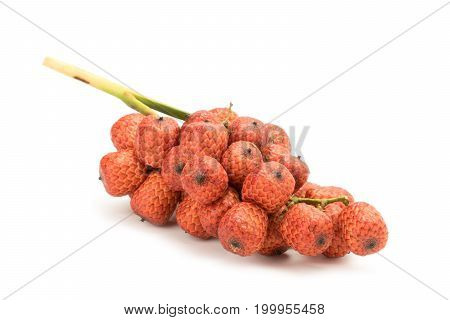Red Rattan Fruit