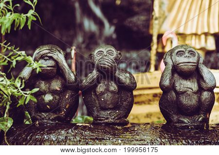 Three Monkey Statues And This Buddhist Concept