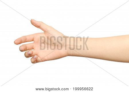 Woman's Hand Ready For Handshaking