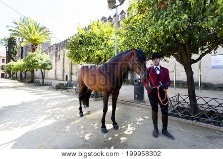 CORDOBA, SPAIN, March 15, 2017: Outside the Alcazar de los Reyes Cristianos in Cordoba Andalusia