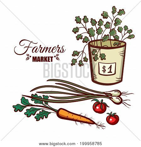Farmers market. Local food. Basket of fresh salad and various vegetables isolated on white background. Hand drawn vector illustration