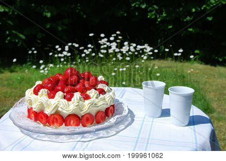 Fresh strawberry cake and two mugs on a table in a garden with blossom daisies